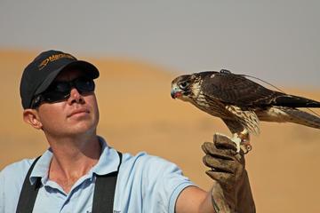 Privétour: trip met valkerij en een safari in Dubai, ontbijt optioneel
