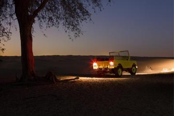 Tour Privato: Safari notturno di lusso nel deserto con trasporto da