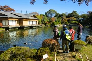 Tóquio de Bicicleta: Edogawa, Incluindo o Aquário de Vida Marinha e o...