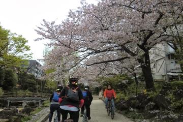 Tokyo en vélo: Skytree, jardin de...