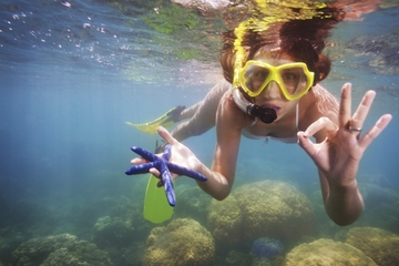 Excursion-plongée avec masque et tuba...