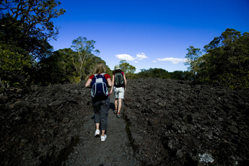 Excursão pela Ilha de Rangitoto...