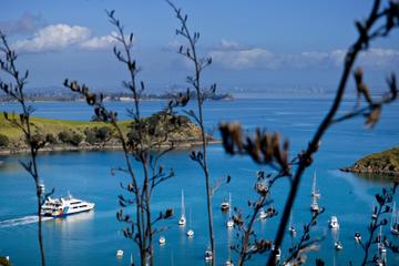 Ile de Waiheke au départ d'Auckland