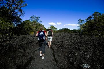 Visita a la isla de Rangitoto desde Auckland