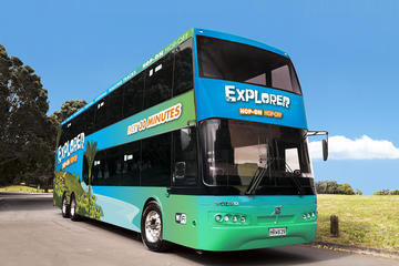Waiheke Island Explorer Hop-on Hop-off Tour