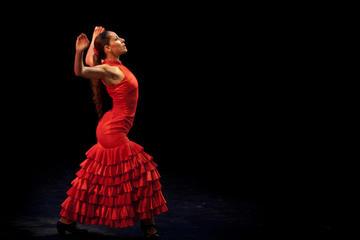 Tour Albaicín & Sacromonte con Espectáculo Flamenco y Tapas