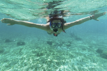 Safári com mergulho de snorkel em Cancun saindo de Puerto Aventuras