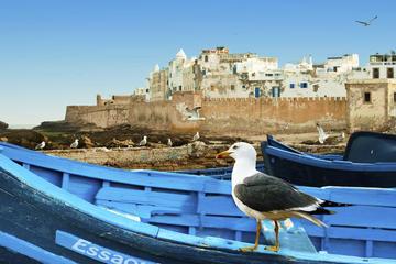 Excursion d'une journée complète à Essaouira au départ de Marrakech