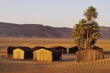 Excursion de 4jours dans le désert du Sahara au départ de...