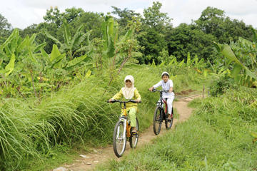 Private Bike Tour of Bongkasa Village