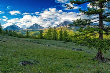 2 Giorni - Parco Nazionale Gorkhi-Terelj con pernottamento in Ger