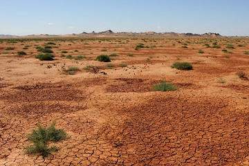 Viaggio di 7 giorni nel deserto del