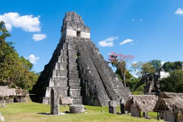 Excursión de un día a Tikal desde San Ignacio