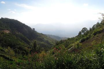 4-Day hiking tour to Usambara ...