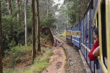 Explore Ooty in a Toy Train