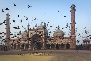 Old Delhi City Experience with Rickshaw Ride