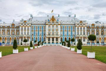 Excursão Terrestre em São Petersburgo: Excursão Privada ao Museu...