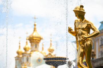 Excursão Terrestre em São Petersburgo: Excursão privada para Pushkin...