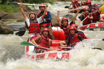 White Water Rafting including Sightseeing to the Temple and Rice Terrace