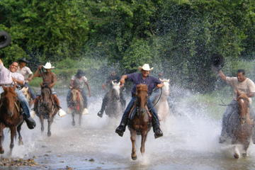 Half-Day Mountain and River Horseback Riding in Punta Cana