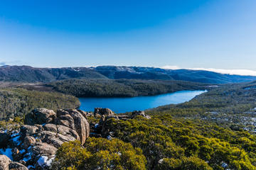 Mount Field National Park Wildlife and Nature Day Trip from Hobart with Lunch