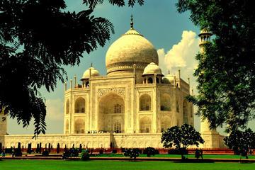 Same Day Agra Tour With Taj Mahal & Agra Fort