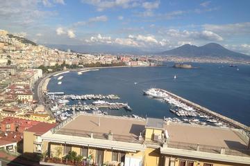 Day Trip from Naples to Mt Vesuvius & Pompeii