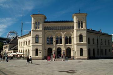 Geselecteerde Oslo stadstour, inclusief het Viking Ship Museum