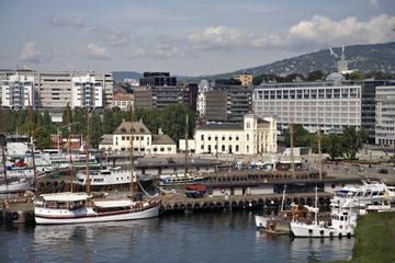 Recorrido por la ciudad de Oslo con todo incluido: Museo de barcos...