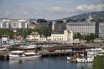 Visite d'Oslo tout inclus: musée des bateaux viking, Vigeland Park...