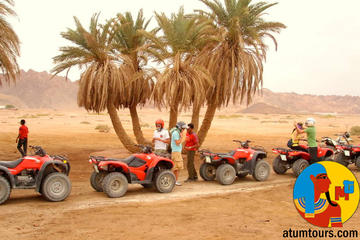 5 Hours with Bedouin Dinner and folkloric Show with the quad bike safari
