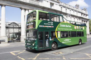 Dublin Freedom Pass: Transporte e excursão turística