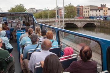 Excursión en autobús con paradas libres por Dublín