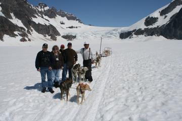 Tour de helicóptero e experiência de trenó puxado por cães em Juneau