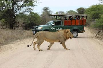 5 Day Classic Kruger National Park...
