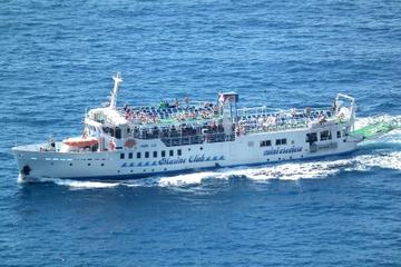 Crucero de un día por la costa de Amalfi: desde Sorrento a Positano o...