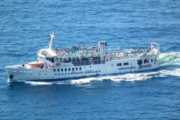 Tages-Bootstour an der Amalfiküste: Sorrento nach Positano oder Amalfi