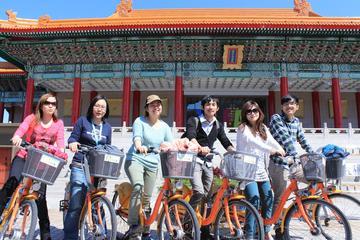 台北を動的に楽しむ:自転車、地下鉄、徒歩による市内終日ツアー