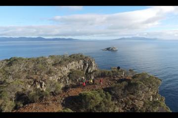 Deluxe Electric Mountain Bike Adventure  of Historic Private Forestier Peninsula