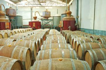 Appleton Estate Rum Tour from Negril