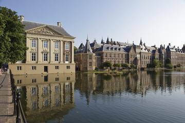 Excursion privée: balade à La Haye...