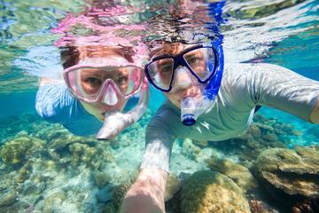 Crucero con buceo de superficie y almuerzo en la Riviera Maya