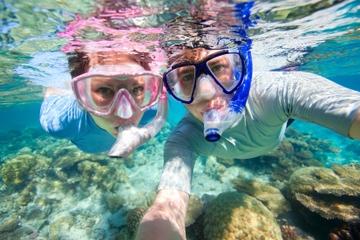 Cruzeiro com mergulho de snorkel e...