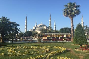 Excursión en autobús Big Bus con paradas libres por Estambul