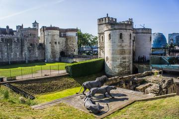 Londres Super Saver: recorrido a pie de la Realeza, con la Torre de...