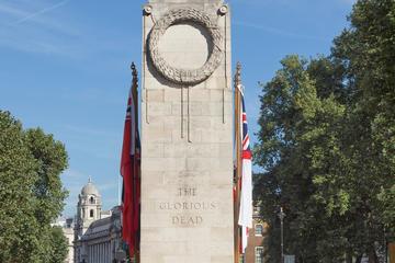 Tour a piedi storico di Londra, con visita a Westminster e ingresso