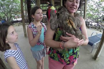 Roatan Monkey, and Sloths Sanctuary and Offshore Snorkel and Beach