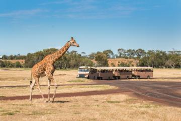 Werribee Open Range Zoo General Admission