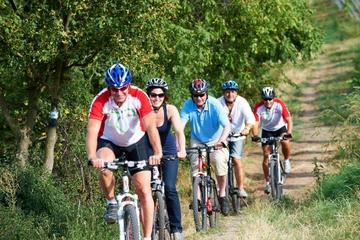 Excursão de bicicleta pelos bosques de Viena