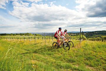 Recorrido privado: Paseo en bicicleta de montaña por bosques de Viena...